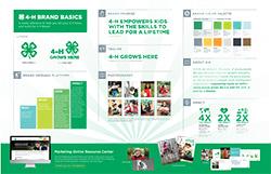 4-H Brand Basics Poster