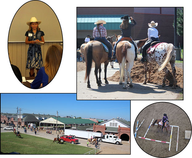 Collage of photos of kids participating in horse related activities
