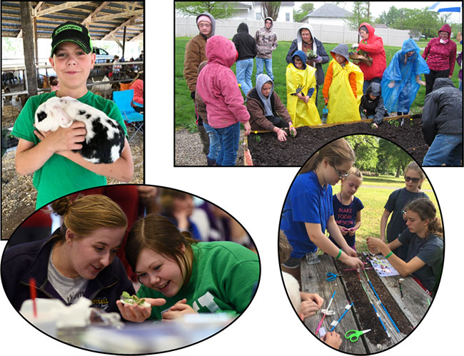 Collage of photos of kids participating in plants and animals activities