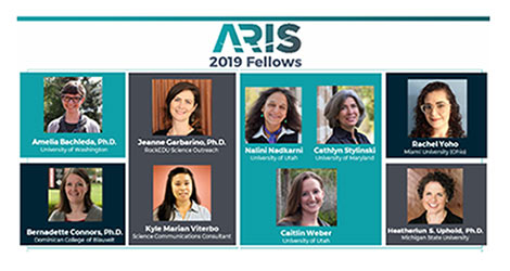 2019 Fellows; select to see full-size