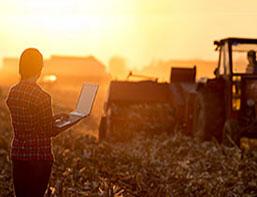 female farmer in field with laptop