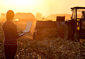 female farmer in field with laptop