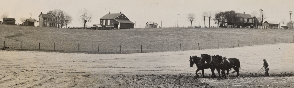 Old image of farmer using horse-driven plow