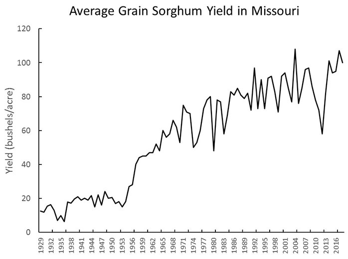 Graph showing average Missouri grain sorghum yield in bushels per acre every three years, from 1929 through 2016