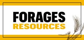 forage resources