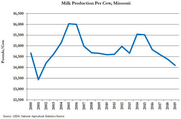 Line graph showing milk production per cow for Missouri from 2000 to 2019. Missouri averaged 14,103 pounds per cow in 2019. Production per cow ranged from 16,026 to 13,441 pounds over the time period. Missouri's milk production per cow has varied tremendously, due to a surge in low-input rotational grazing dairying since the year 2005. Data source: USDA National Agricultural Statistics Service.