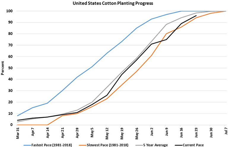 U.S. cotton planting progress chart starting March 2019