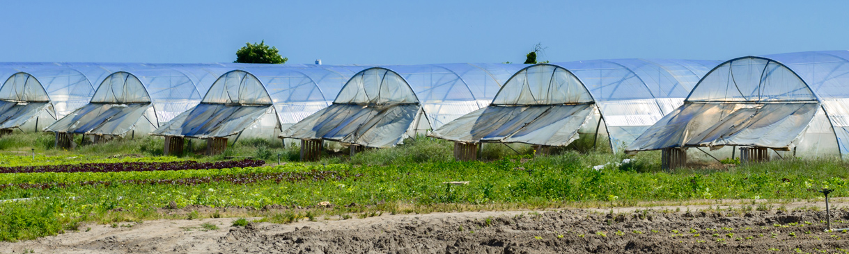 Greenhouse tunnels