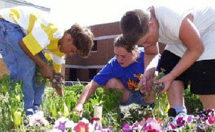 Three children working in a flowerbed