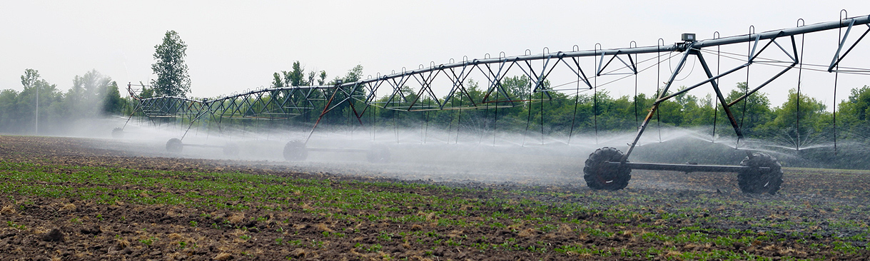 Sprayer irrigating field