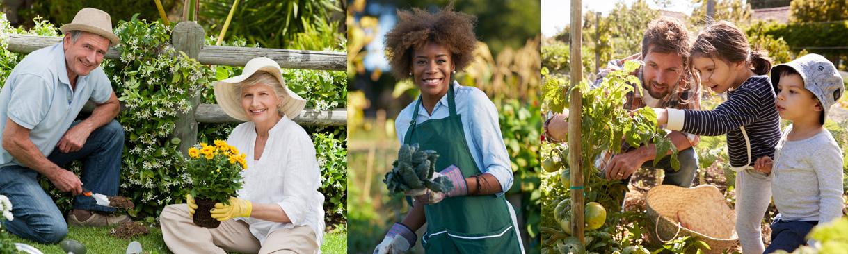 Trio of gardeners