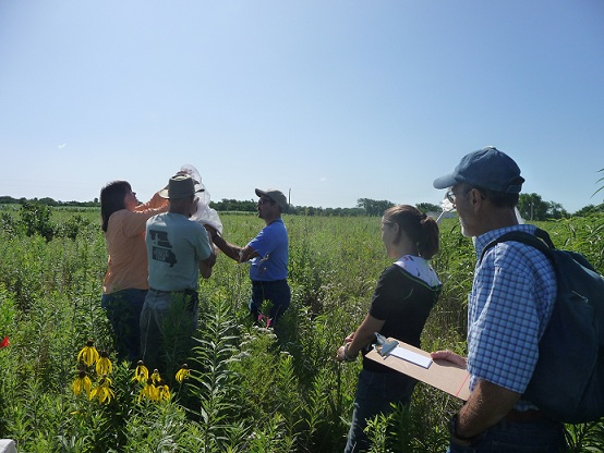 Hi Lonesome Master Naturalists conduct insect sampling on the prairie