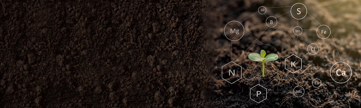 Soil with needed elements icons