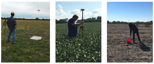 In-field monitoring