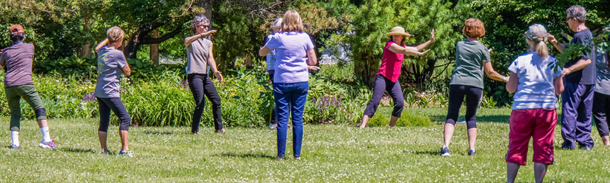 Tai chi class being held in sunny field.