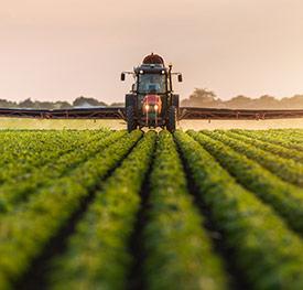 A combine in a crop field