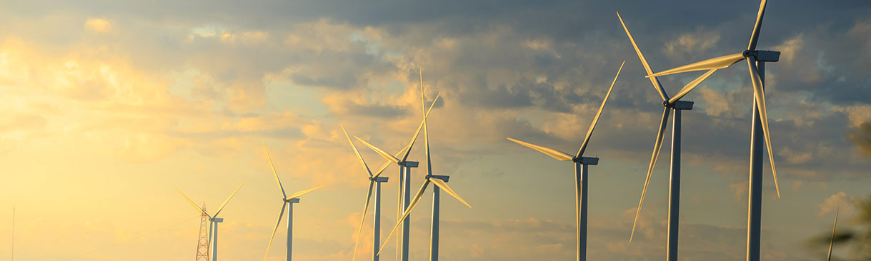 Wind turbines in morning light