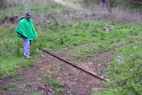 Man tending his woodlands