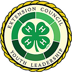 Extension Council Youth Leadership logo